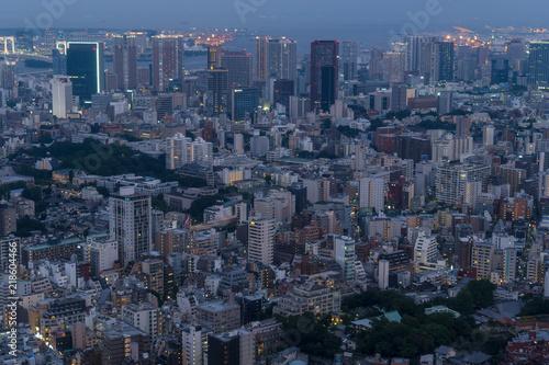 東京 港区から見る湾岸方面の都市風景