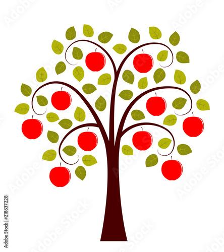 Fototapeta apple tree