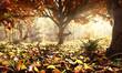 Leinwanddruck Bild - Reh in herbstlichem Wald