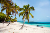 Idyllic beach at Caribbean - 218679494