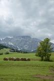 Panorama delle Dolomiti - 218684002