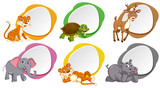 A set of blank banner with animals