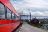 Railway travel in Norway.Views from the train.The Bergen - Oslo train. Norway - 218717263