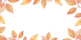 Watercolor autumn vector card template design of leaves and branches isolated on white background. - 218752024