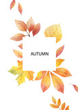 Watercolor autumn vector card template design of leaves and branches isolated on white background. - 218752229