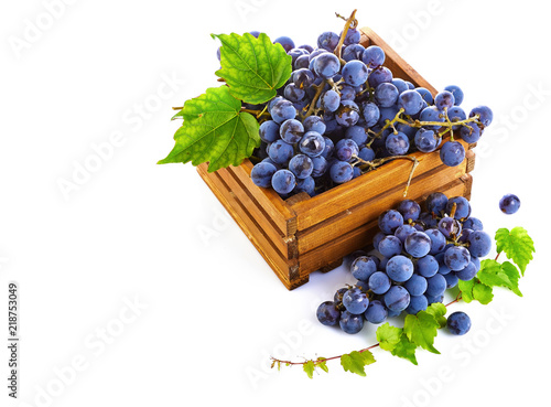 Blue grapes in wooden box with vine still life. Green leaf. © Yasonya