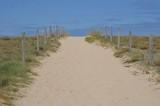 Chemin dans les dune, Ouest de la France - 218760235