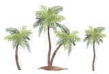 Watercolor palm tree set - 218761032