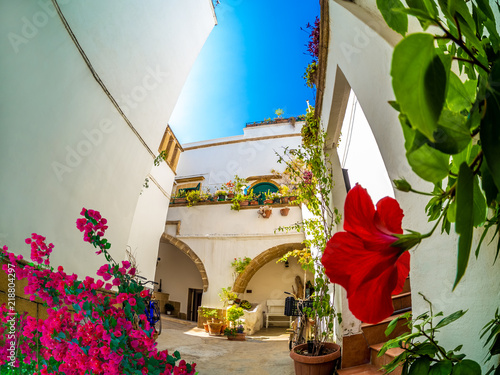 Traditional white house with garden and flowers on balcony in Gallipoli village, Puglia - Italy - 218804297
