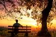 Leinwandbild Motiv Enjoying the sunset on a bench
