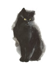 Black cat wild animal in a watercolor style isolated. Full name of the animal: cat. Aquarelle wild animal for background, texture, wrapper pattern or tattoo. - 218848816