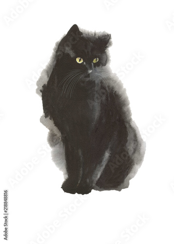 Fototapeta Black cat wild animal in a watercolor style isolated. Full name of the animal: cat. Aquarelle wild animal for background, texture, wrapper pattern or tattoo.
