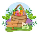 Farm fresh cartoons - 218905065