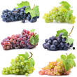 Leinwanddruck Bild - Grapes on a white background