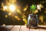 Image of pile of coins with plant on top in glass jar for business, saving, growth, economic concept - 218944689