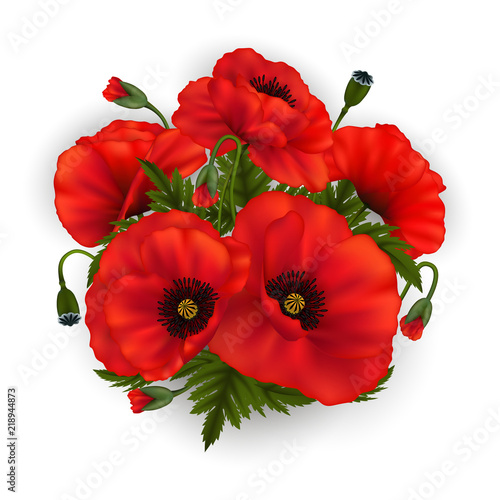 Poppy Flowers Buy Photos Ap Images Detailview