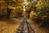 Fall landscape, Railway tracks running through autumn forest