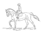 Equestrian sport. A rider on a horse. Black and white outline.