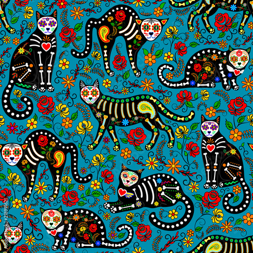 meksykanskie-kotki