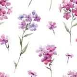 Watercolor floral phlox pattern - 219008670