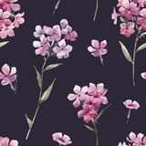 Watercolor floral phlox pattern - 219008692
