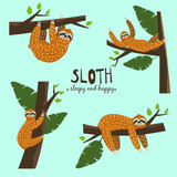 Set Cute funny sloth hanging on the tree. Sleepy and happy. Adorable hand drawn cartoon animal illustration. Vector cute sloth for greeting card, invites, poster, banner, t-shirt print, background