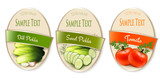 Set of labels with ecological tomato and pickles isolated. Vector illustration - 219050028