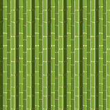 Bamboo background texture concept