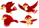 Set of cute red birds