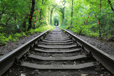 railway in green forest - 219092478