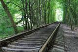 railway in forest - 219092492