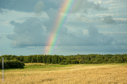Rainbow on a dark sky over the forest and fields - 219116661