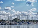 Segelboote im Hafen von Rerik,Ostsee - 219128630
