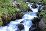 run of mountain brook - 219130021