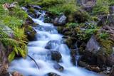nice mountain brook - 219130022