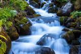 beautiful mountain brook - 219130052
