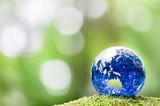 緑の中のガラスの地球儀