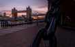 London sunset  - 219164255