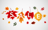 Abstract Vector Illustration Autumn Sale Background with Falling Autumn Leaves - 219186436
