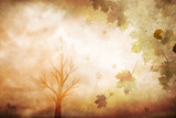 Sunny artistic orange red colored autumn season leaves decoration with tree background.  - 219197293