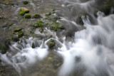Magic mountain stream with lovely green mossy rocks. Long exposure used. Kamnik Bistrica, Slovenia. - 219197669