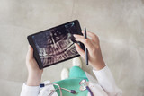 Doctor looking at teeth X-ray on digital tablet