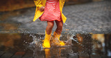 leg of child in rubber boots in puddle  on autumn walk - 219209458