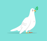 Cute white dove bird illustration isolated
