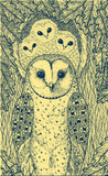 Hand drawn art with owls on the oak tree. Realistic ink graphic artwork. Vector illustration