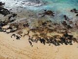 Aerial view of a black volcanic rock beach in Wailea, Maui, Hawaii
