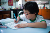 Portrait of Asian little girl doing her homeworks after school - 219230076