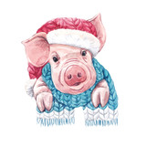 2019 year of the pig - 219234620