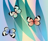 Exotic colorful butterflies on fantasy leaves background, vector illustration