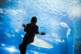 Cute boy watches fishes in aquarium